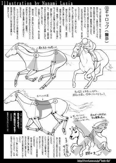 馬の描き方その1B簡易版