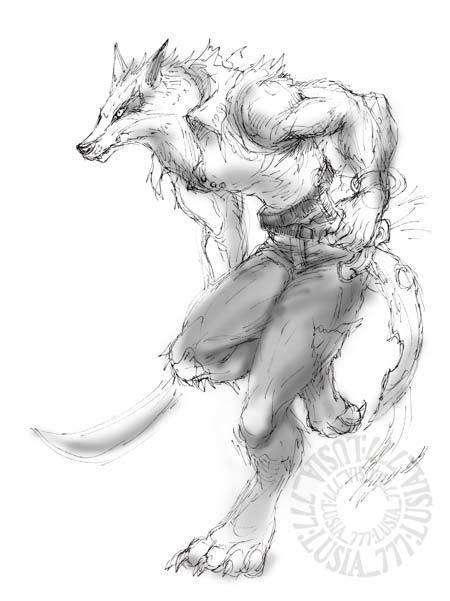 チラシの裏オオカミオトコ.jpg
