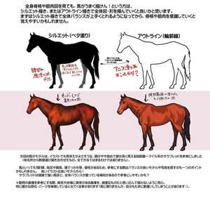 馬の描き方その2Aイラスト