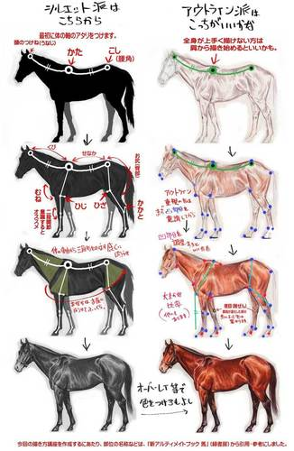 馬の描き方その2Bイラスト
