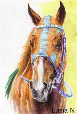 アグネスラズベリ競走馬